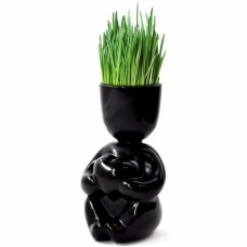 Набор для выращивания Eco Романтик в черном
