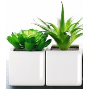 Искусственное растение в кашпо SUCCULENT 8*8*8 см