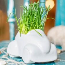 Набор для выращивания Eco Машина